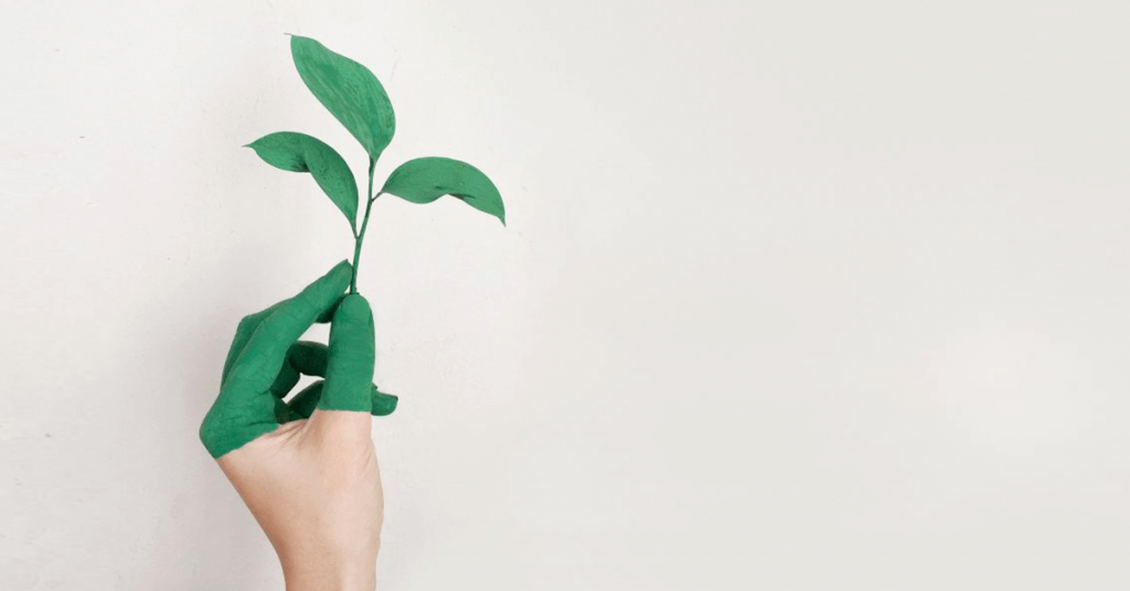 Les 10 outils pour être éco-responsable facilement
